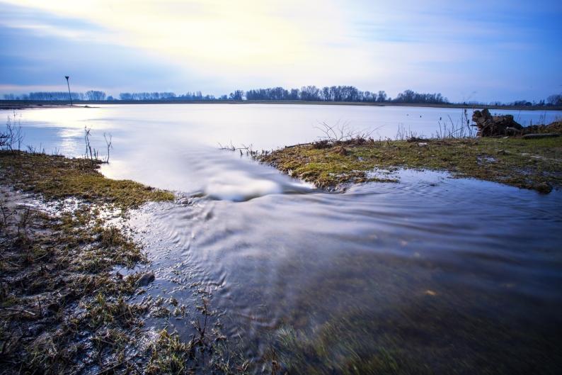 de Rijn bij Rhenen
