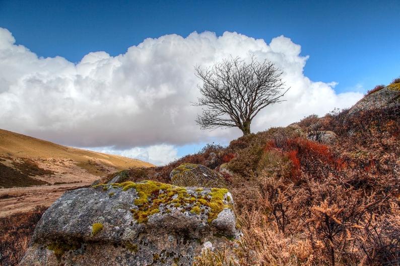 180413-dartmoor-02