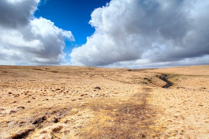 180413-dartmoor-03