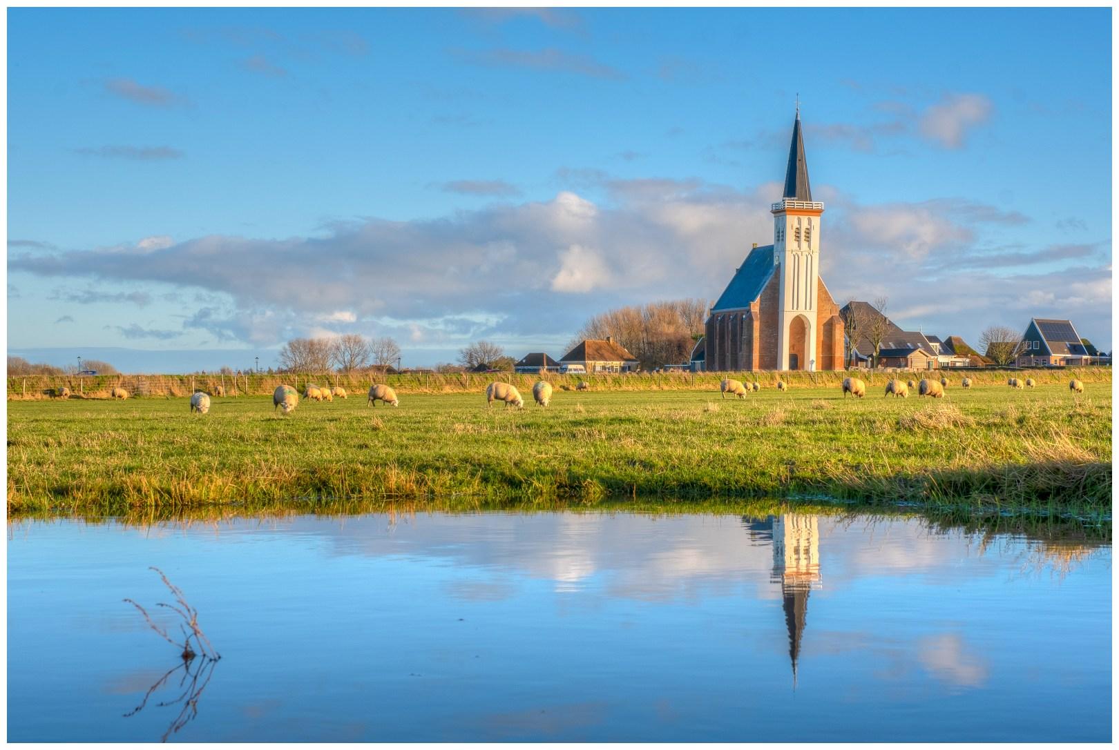 Texel recent december '20